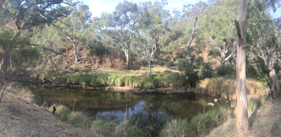 Onkaparinga Gorge Social Run