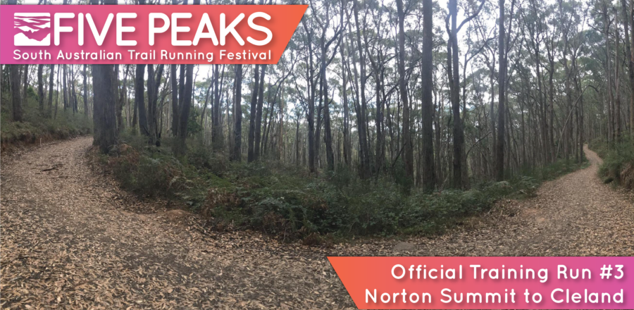 Five Peaks Official Training Run #3 – Norton Summit to Cleland (16 km or 12km)